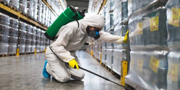 Commercial Termite Treatment Services in Los Angeles