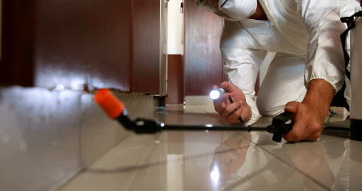 Pest Control Services in Altadena